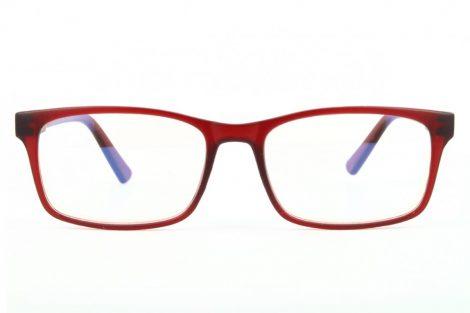 Ochelari protecție calculator BLF73C